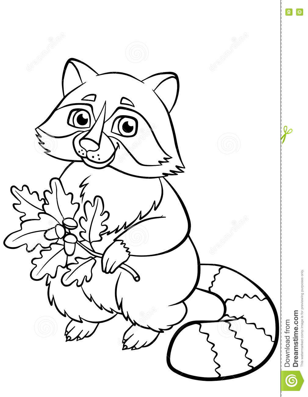 Coloring Pages Animals Little Cute Raccoon Stock Vector