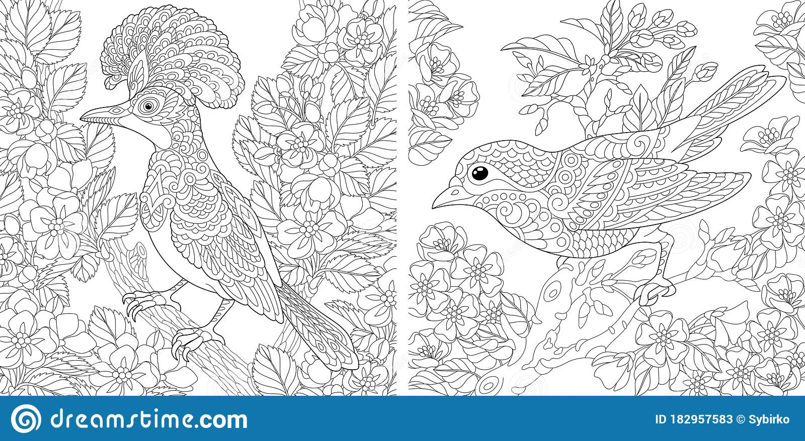 Coloring Pages With Birds In Floral Garden Stock Vector