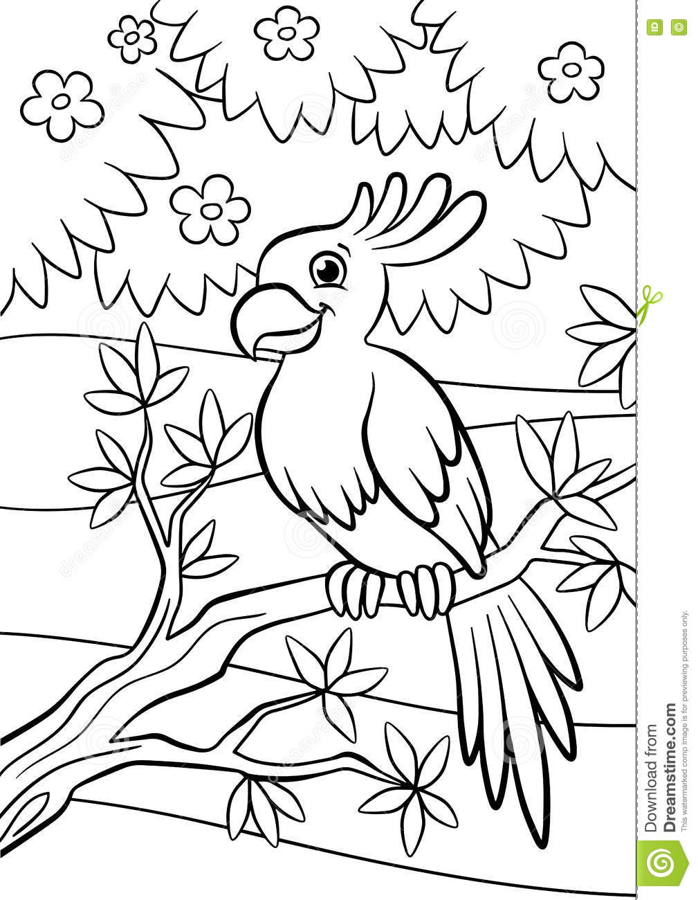 coloring pages parrot - cartoon birds for kids little cute parrot vector