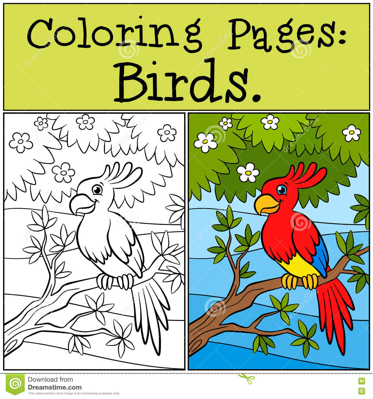 Coloring Pages: Birds. Little Cute Parrot. Stock Vector ...