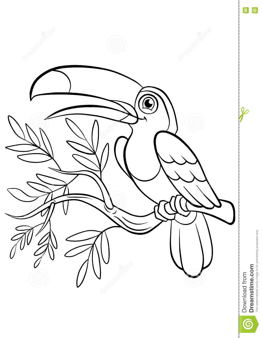 Banch Birds Coloring Cute Little Pages Sits Smiles Toucan