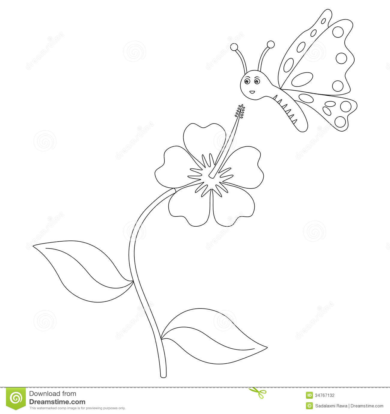 Coloring Pages Butterfly And Flower Stock Vector