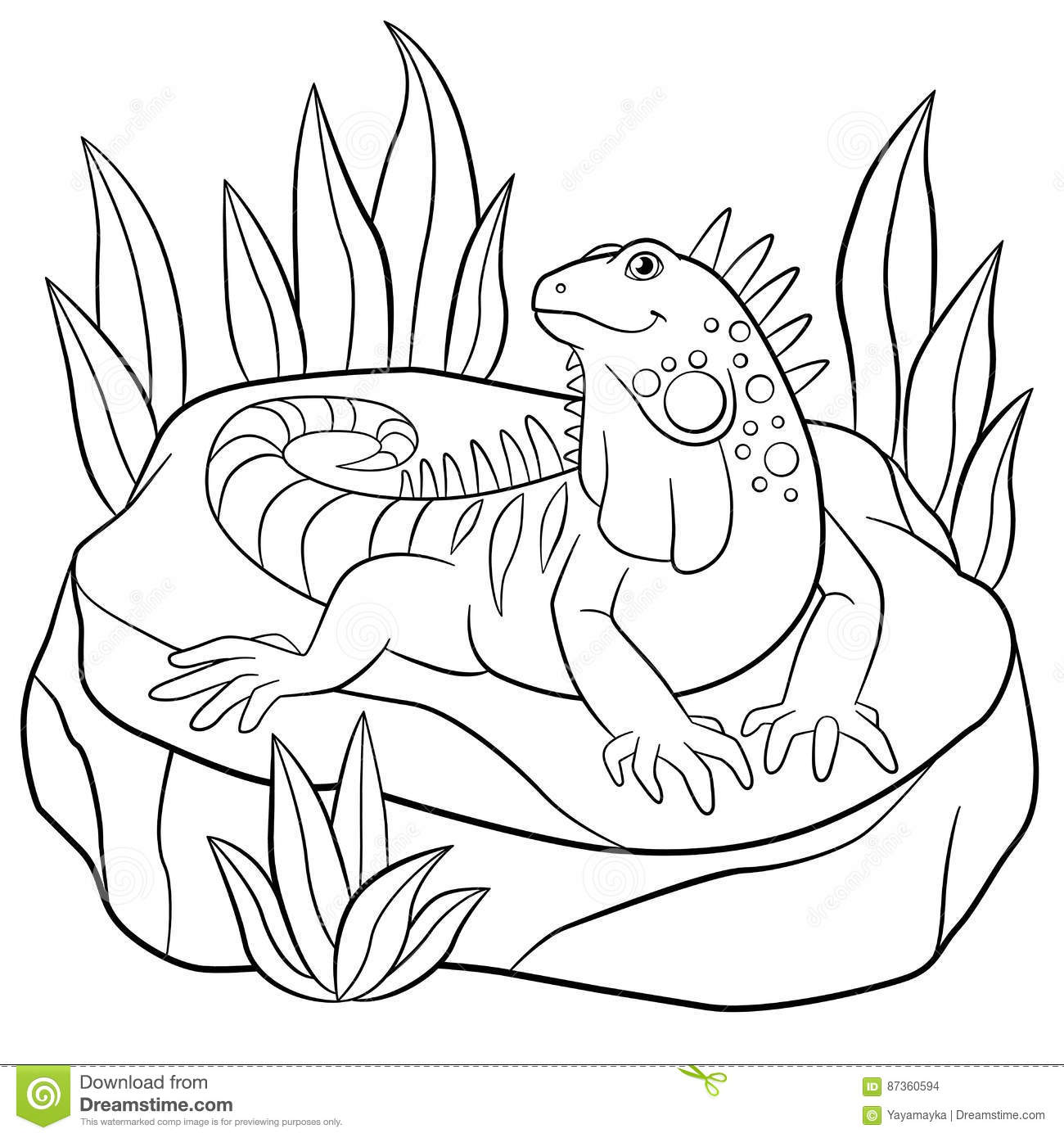 Coloring Pages Cute Iguana Sits On The Rock Stock Vector