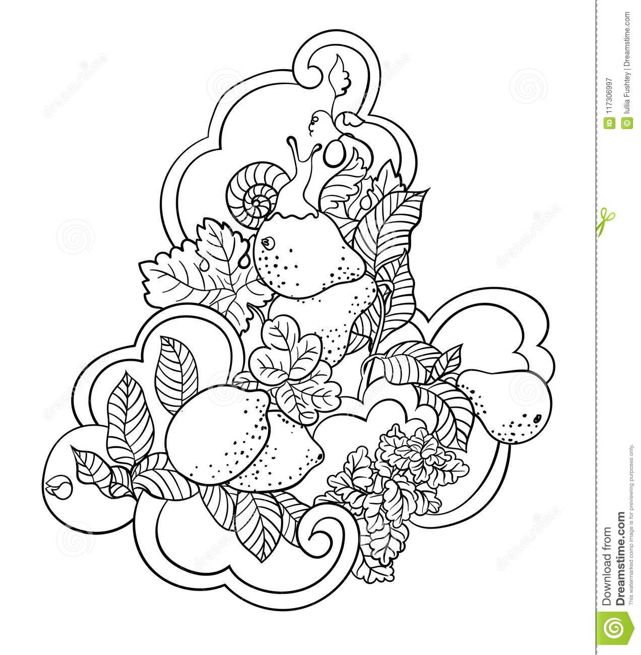 Coloring pages with fruits and abstract waves for children and a