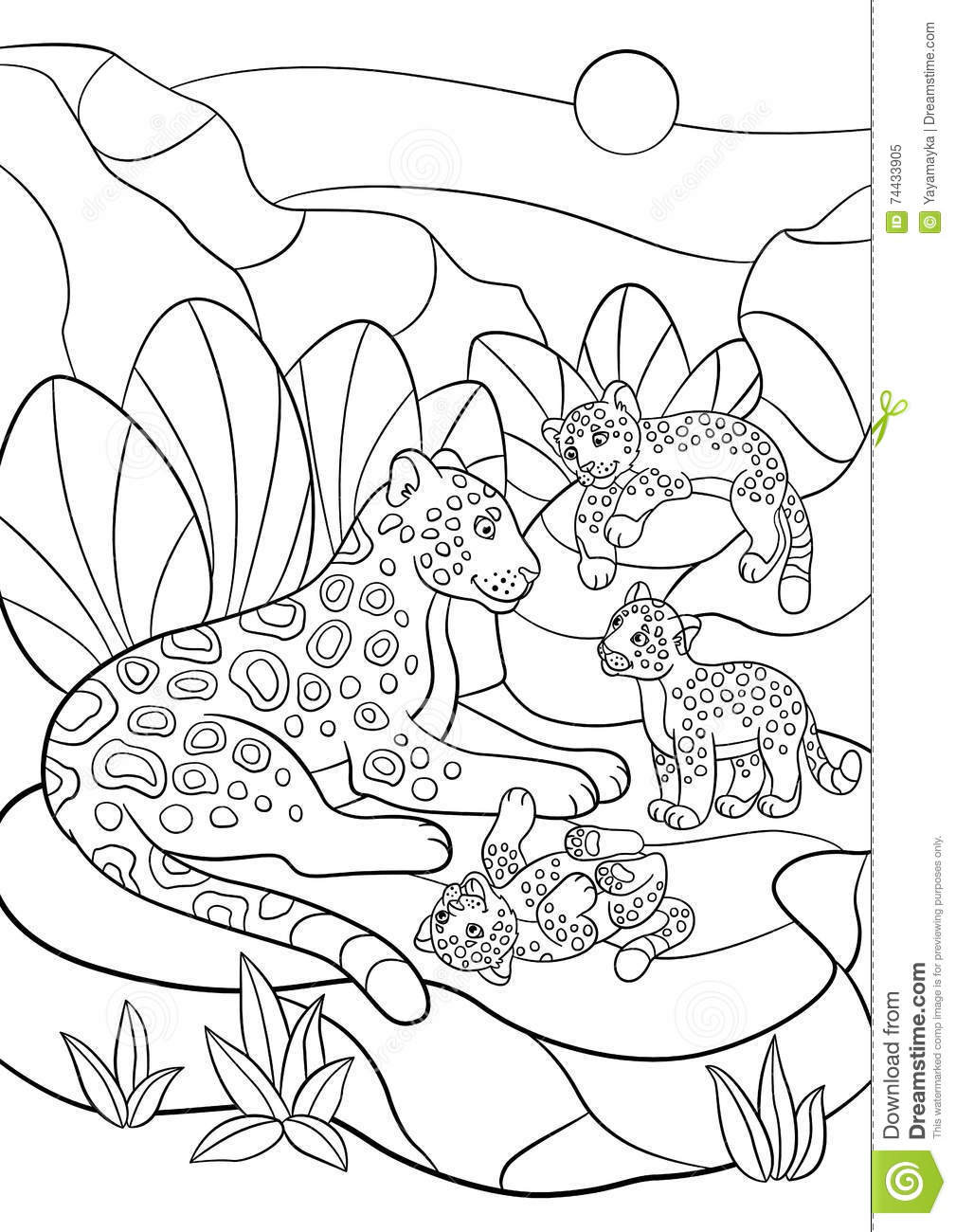 Coloring Pages Mother Jaguar With Her Little Cute Cubs Stock Vector Illustration Of Contour Kids 74433905