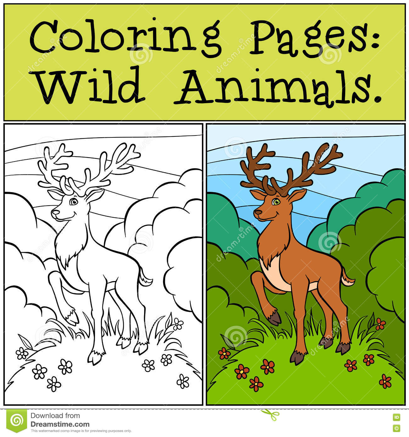 Coloring Pages: Wild Animals. Cute Deer. Stock Vector - Illustration ...