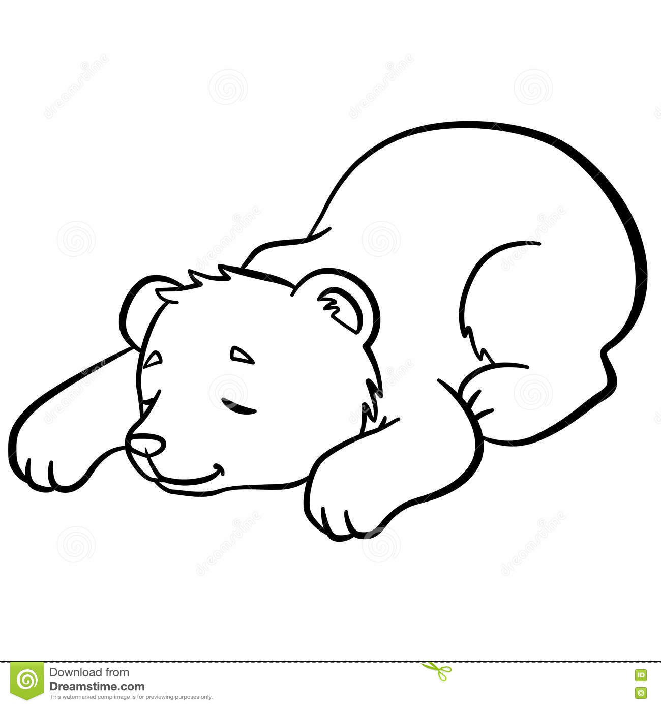 coloring pages wild animals little cute baby bear sleeps stock