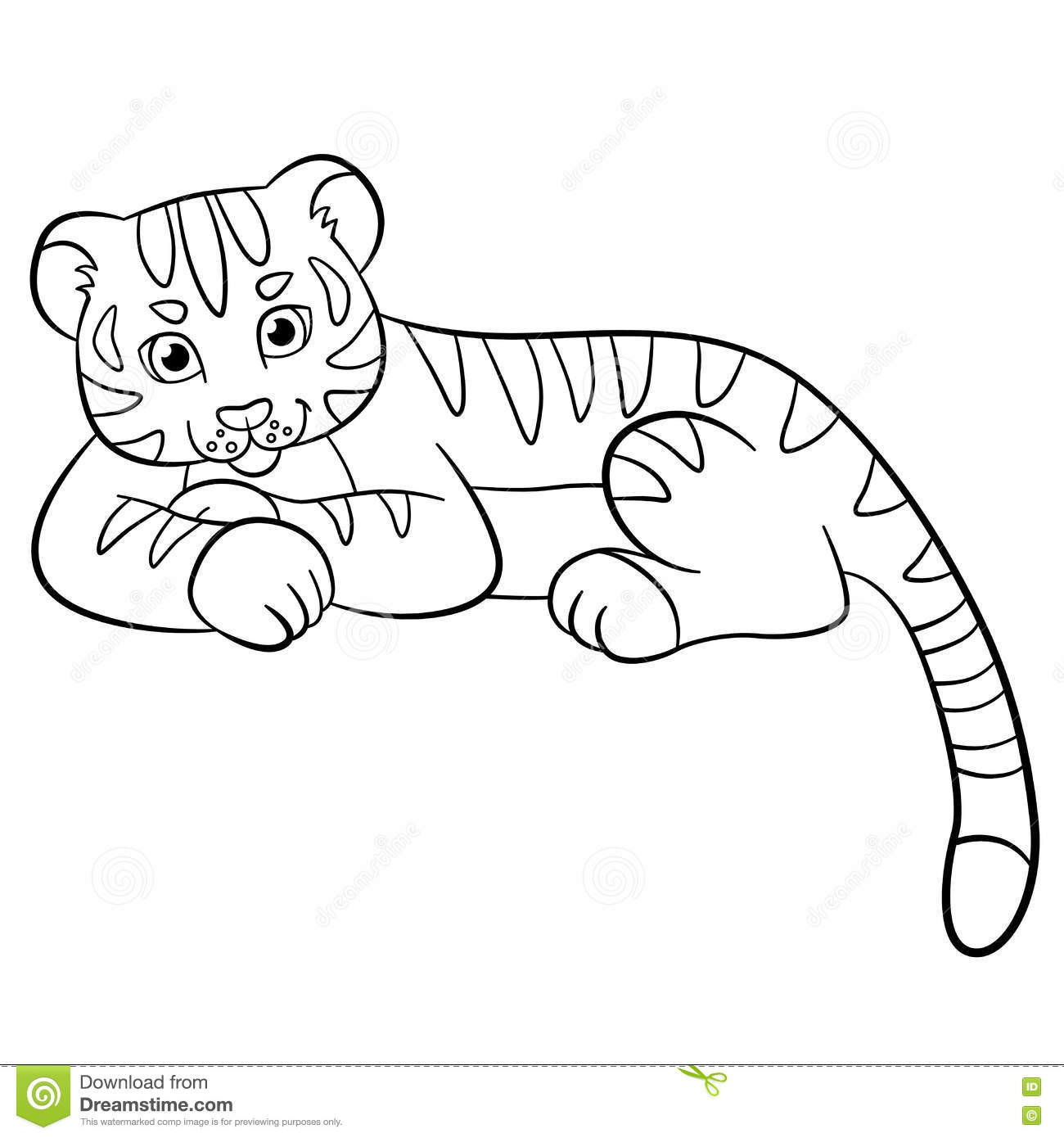 coloring pages wild animals little cute baby tiger smiles stock