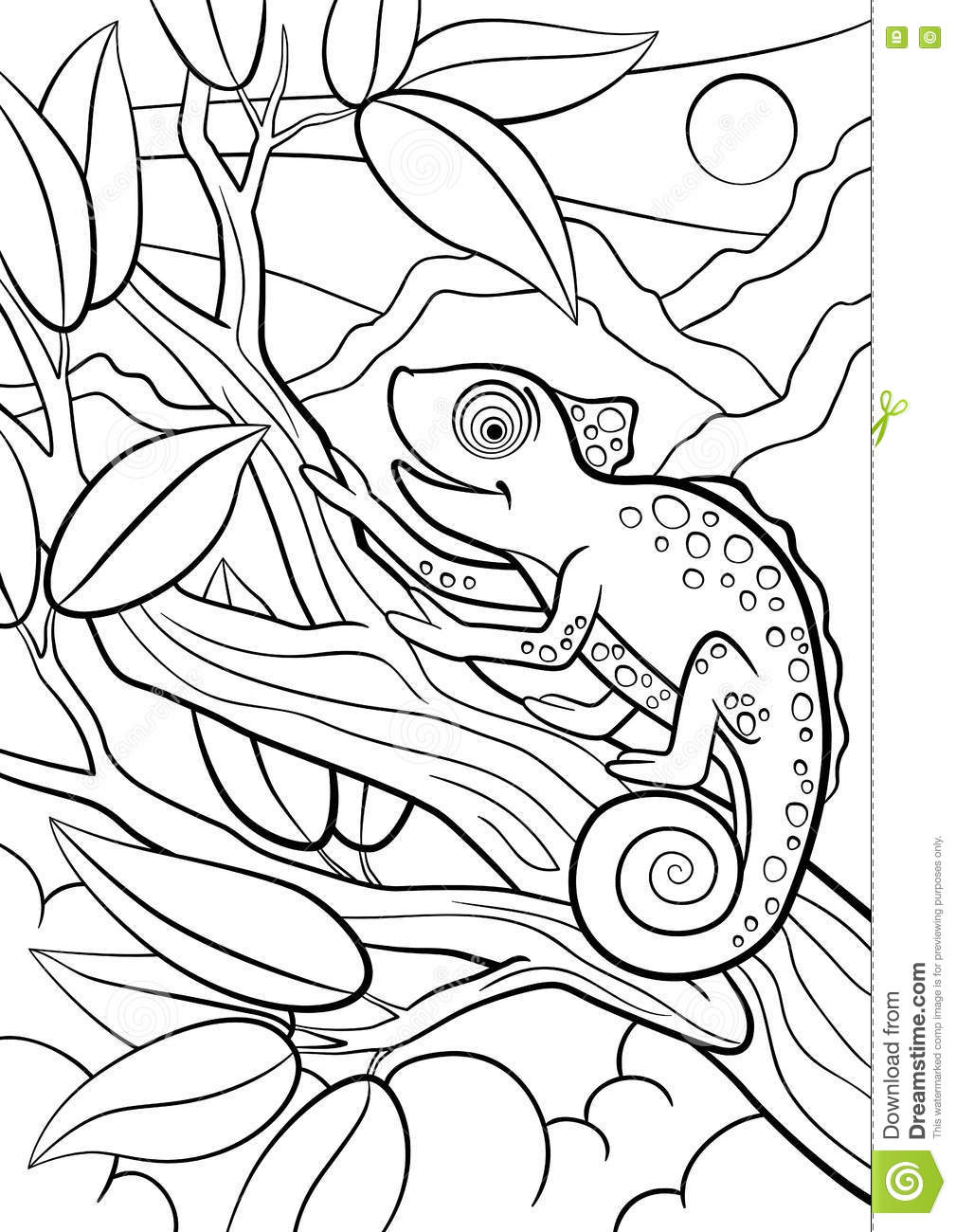 Aninimal Book: Coloring Pages. Wild Animals. Little Cute Chameleon Stock ...