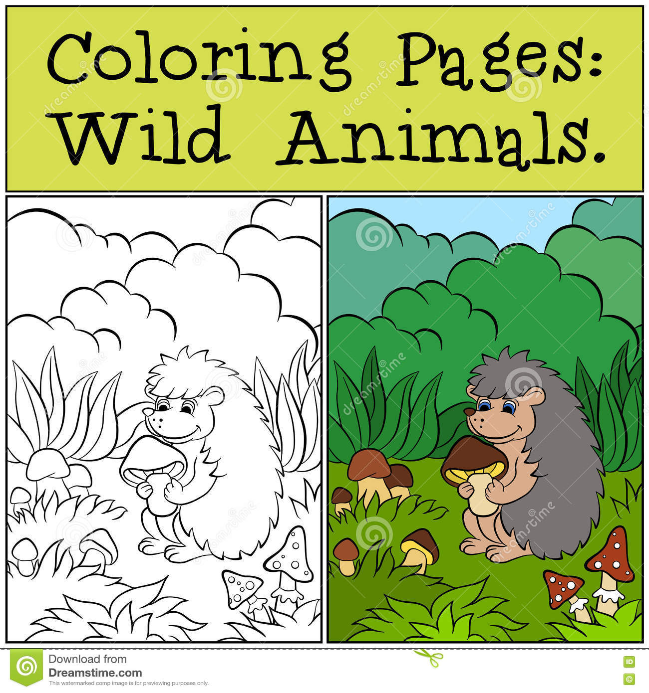 Coloring Pages: Wild Animals. Little Cute Hedgehog . Stock Vector ...