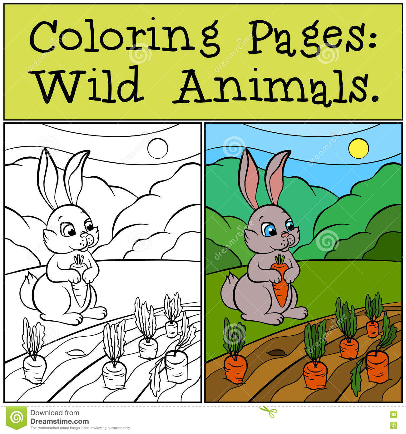 Coloring Pages: Wild Animals. Little Cute Rabbit. Stock Vector ...