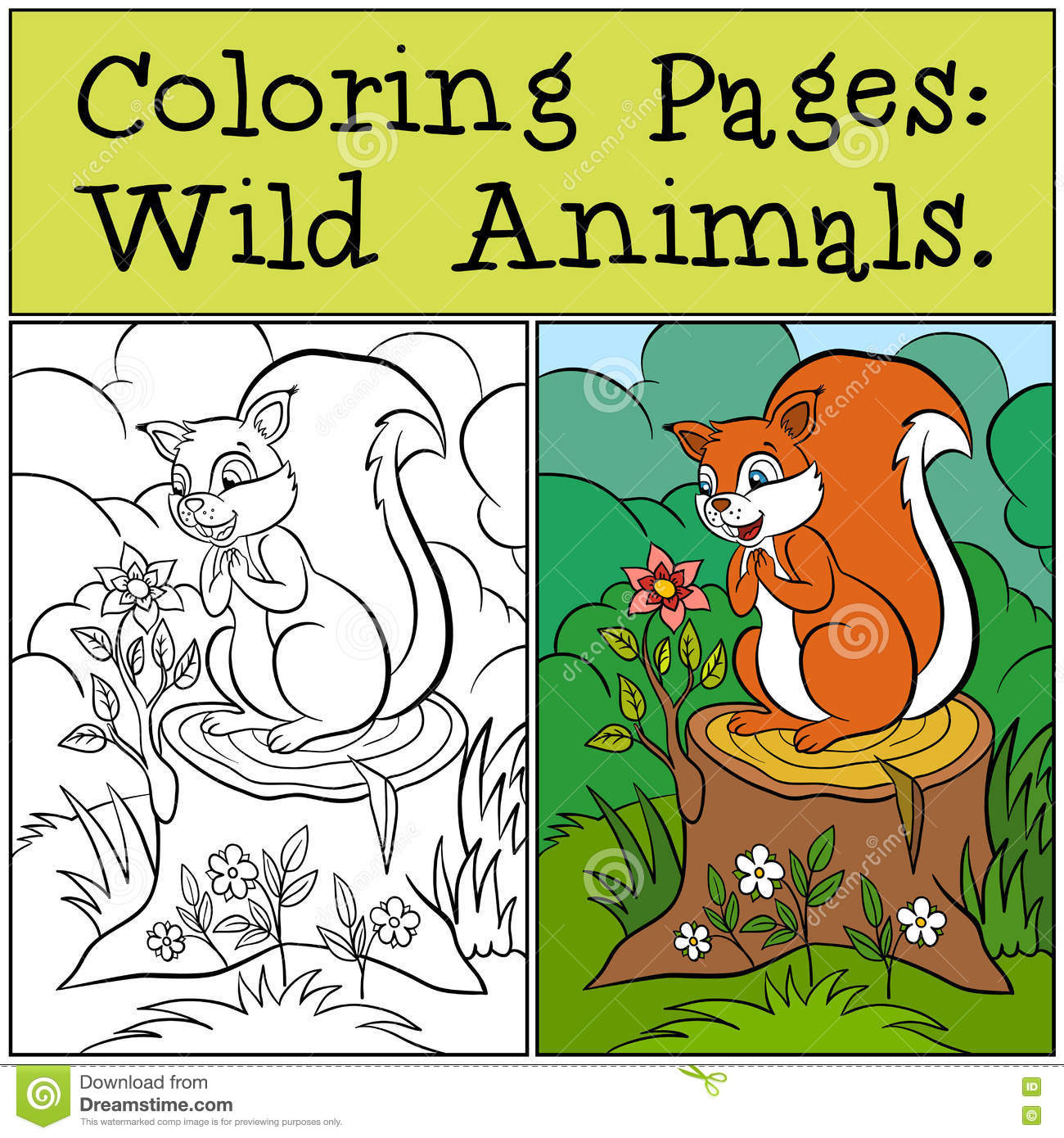 Coloring pages wild animals little cute squirrel Coloring book wild animals