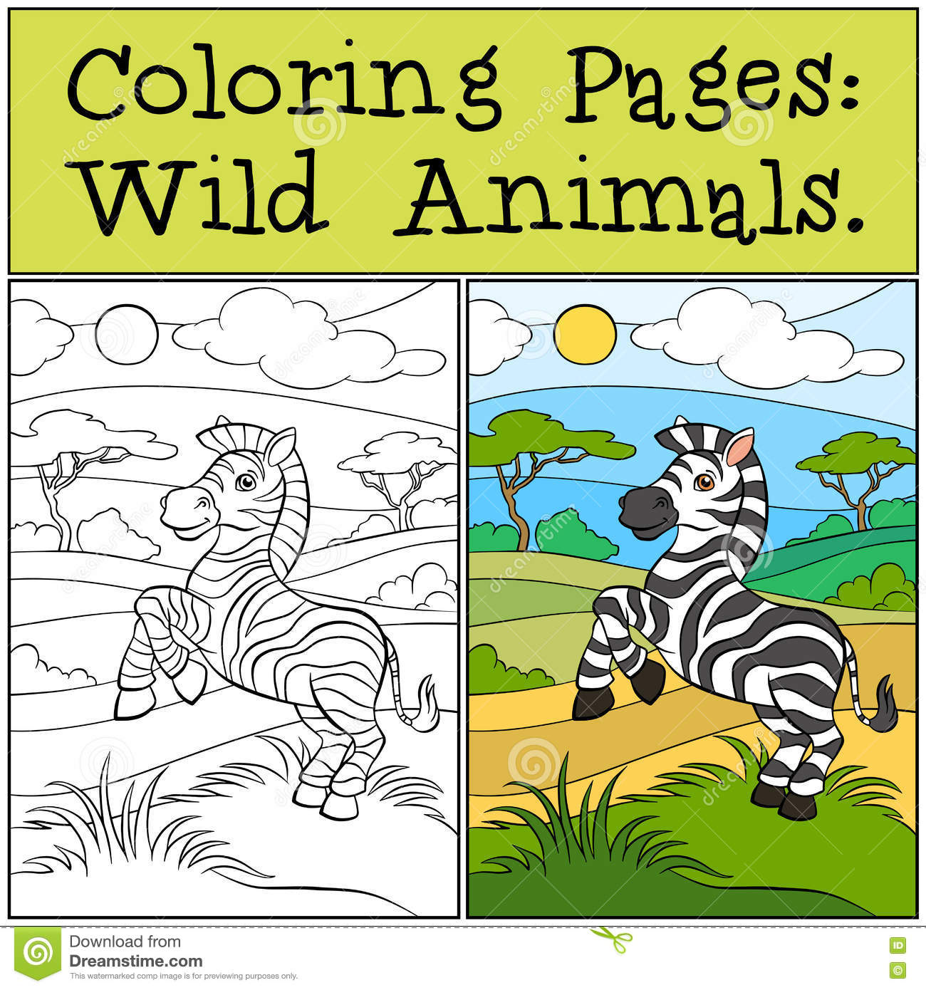 Download Coloring Pages Wild Animals Little Cute Zebra Stock Vector
