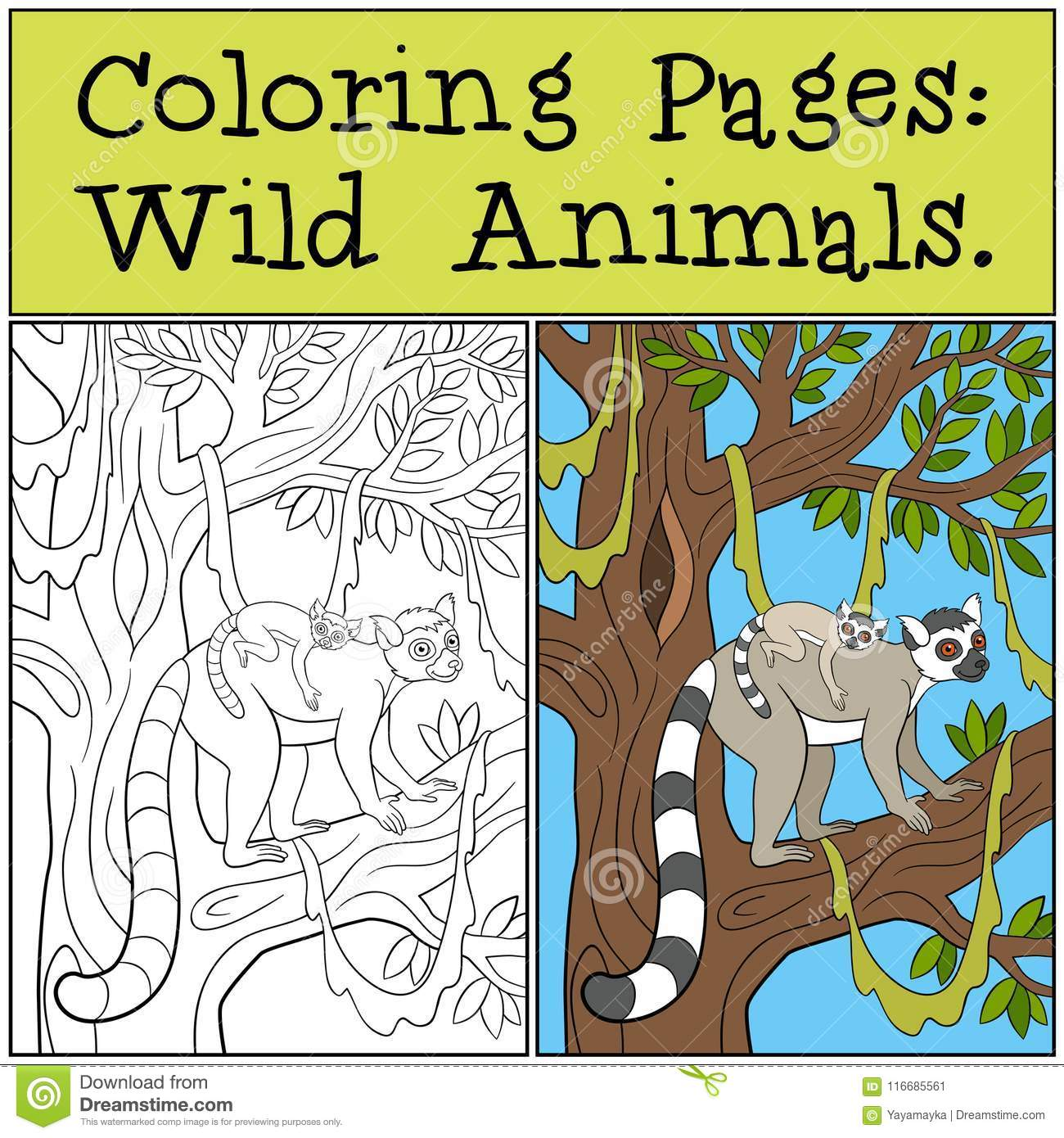 Coloring Pages: Wild Animals. Mother Lemur With Her Baby ...