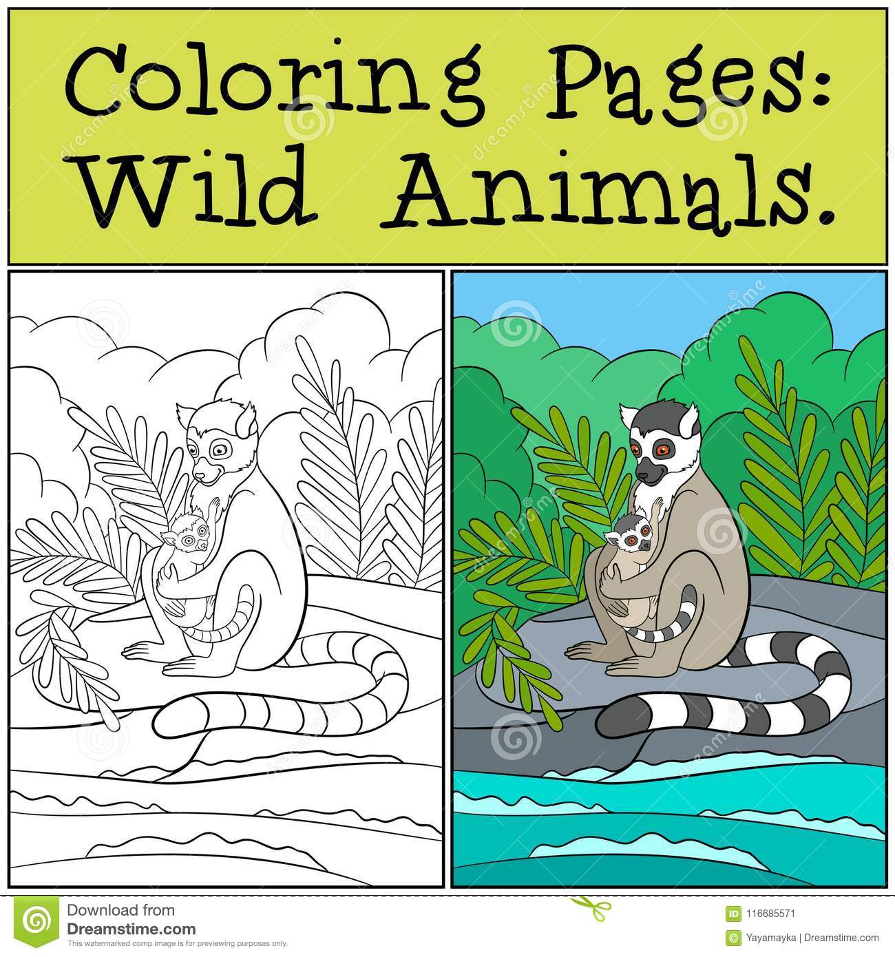 Coloring Pages: Wild Animals. Mother Lemur With Her Baby. Stock ...