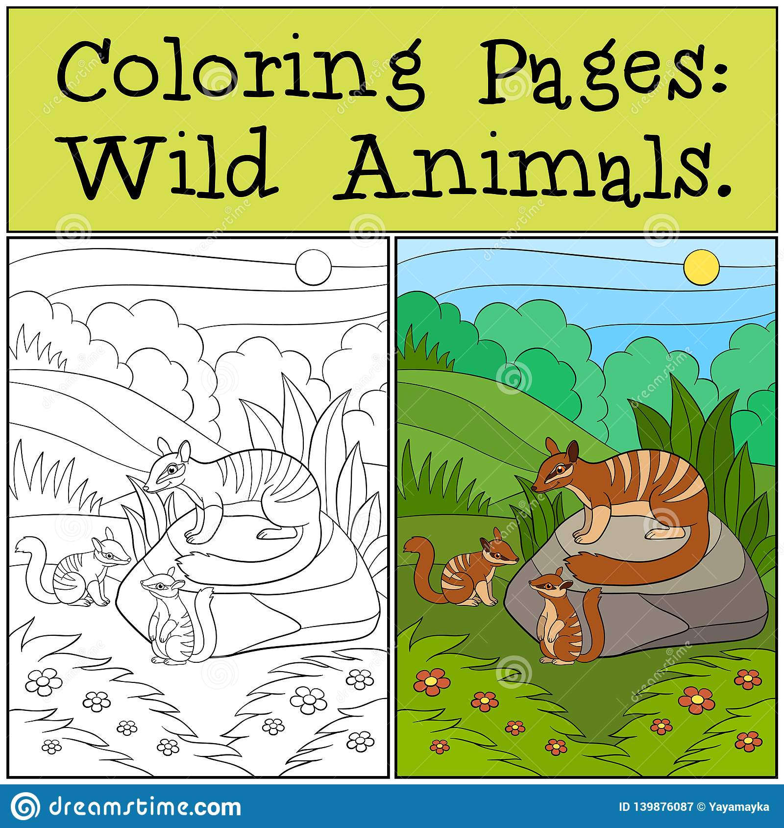 Coloring Pages: Wild Animals. Mother numbat with her babies