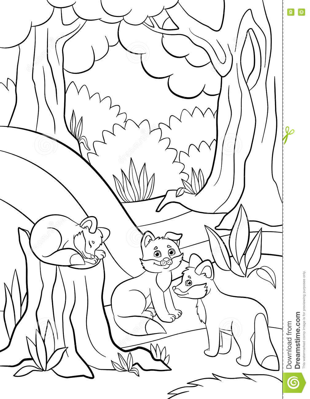 baby coloring cute forest fox