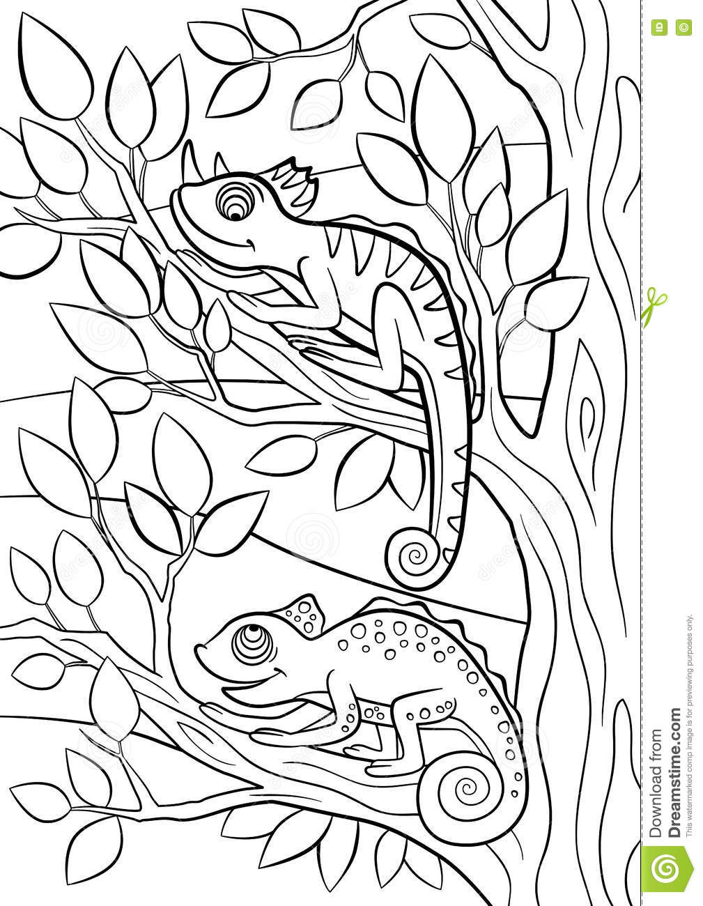 Coloring pages wild animals two little cute chameleon Crazy animals coloring book