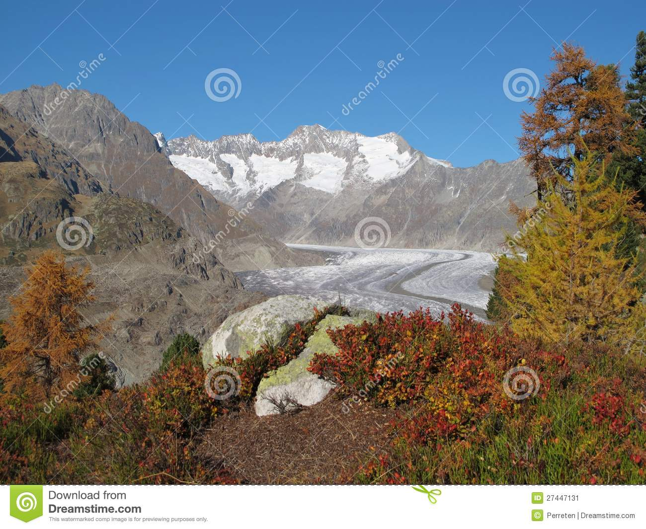 Colors Of Autumn In The Aletsch Area