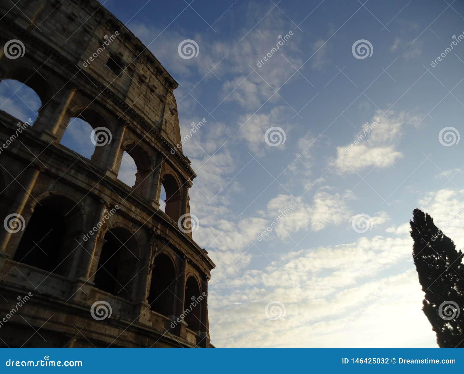 Colosseum romano con el árbol