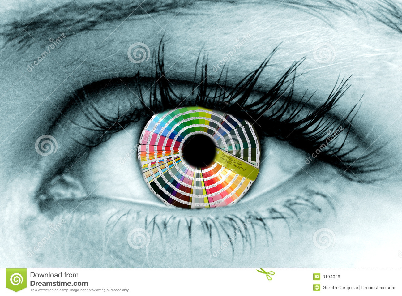 Rainbow Eye Closeup Stock Image Image Of Closeup Lash 20012003