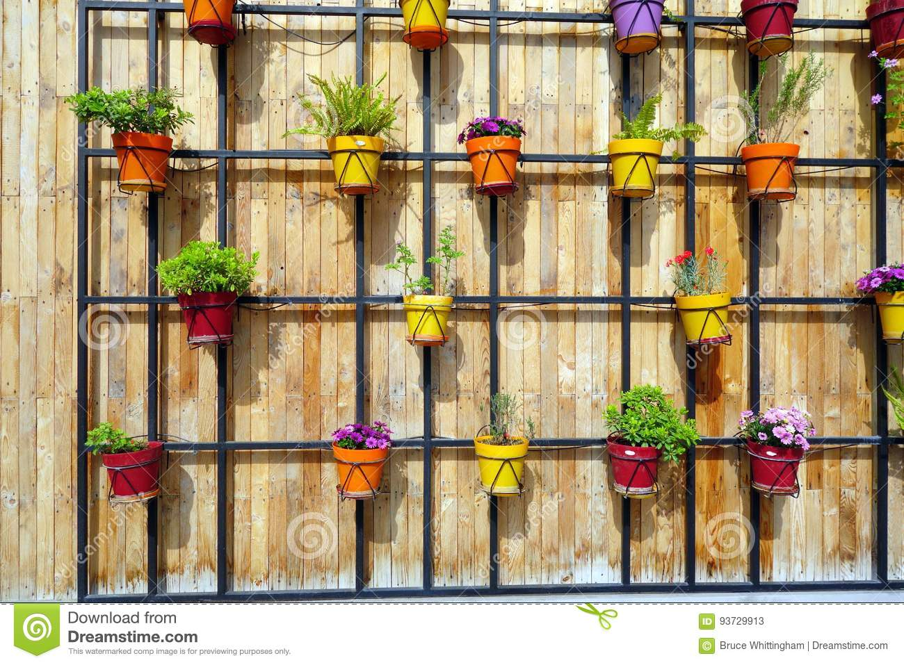 Colourful Flower Pots On Wooden Wall Stock Image - Image of wood ...