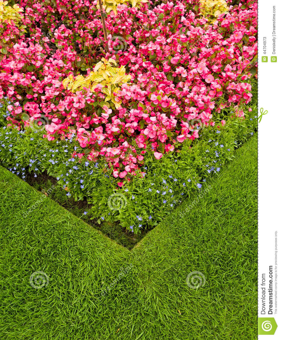 Colourful Garden Flower Bed Stock Photo Image 44704973