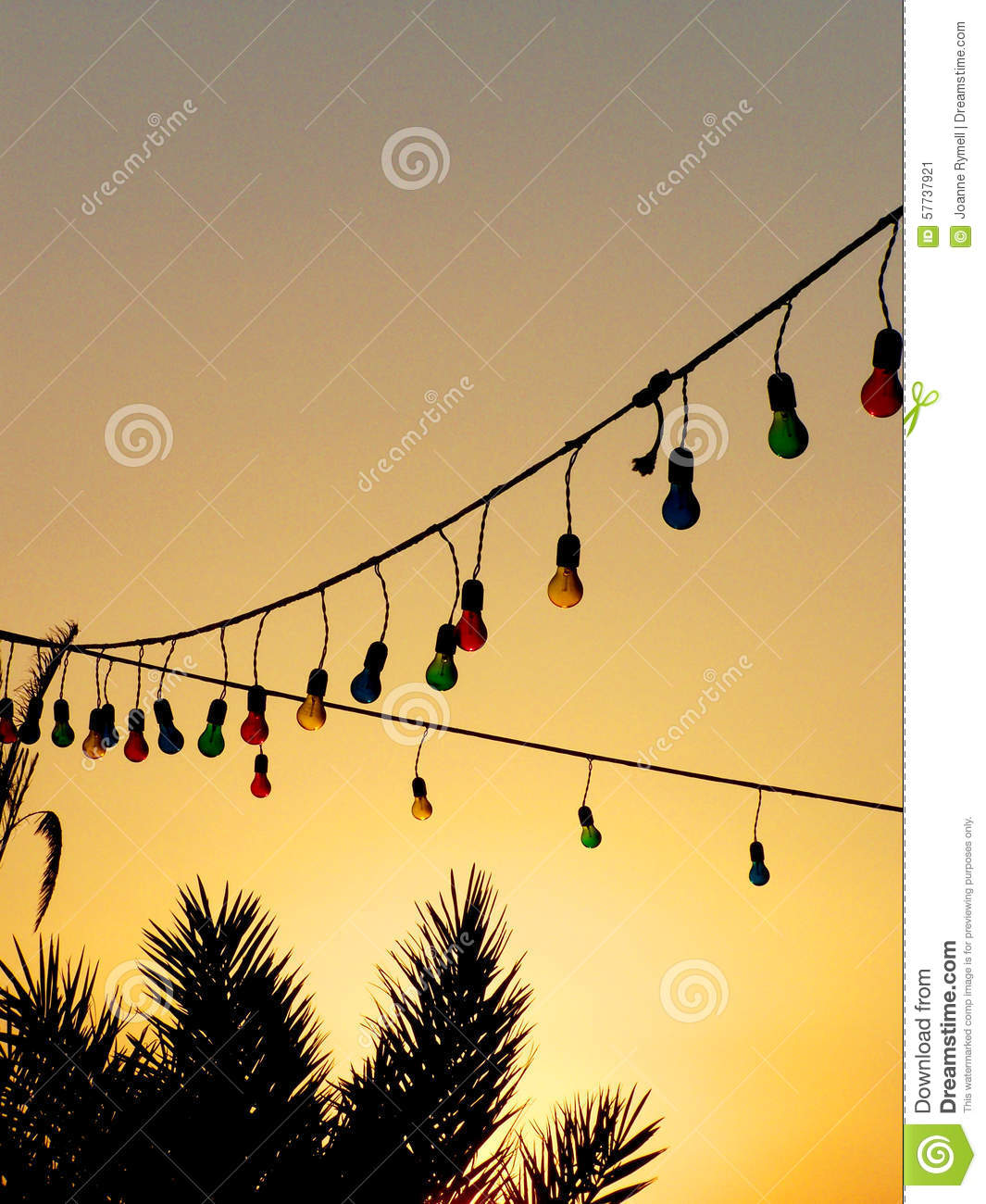 Colourful Light Bulbs And Palm Trees At Sunset Stock Photo - Image: 57737921