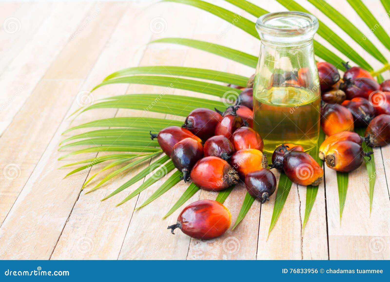 Coltivazione commerciale dell olio di palma Poiché l olio di palma contiene più sa