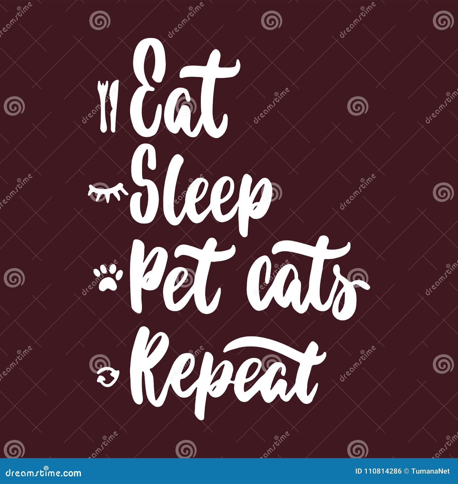 Coma A Repetição Dos Gatos Do Animal De Estimação Do Sono