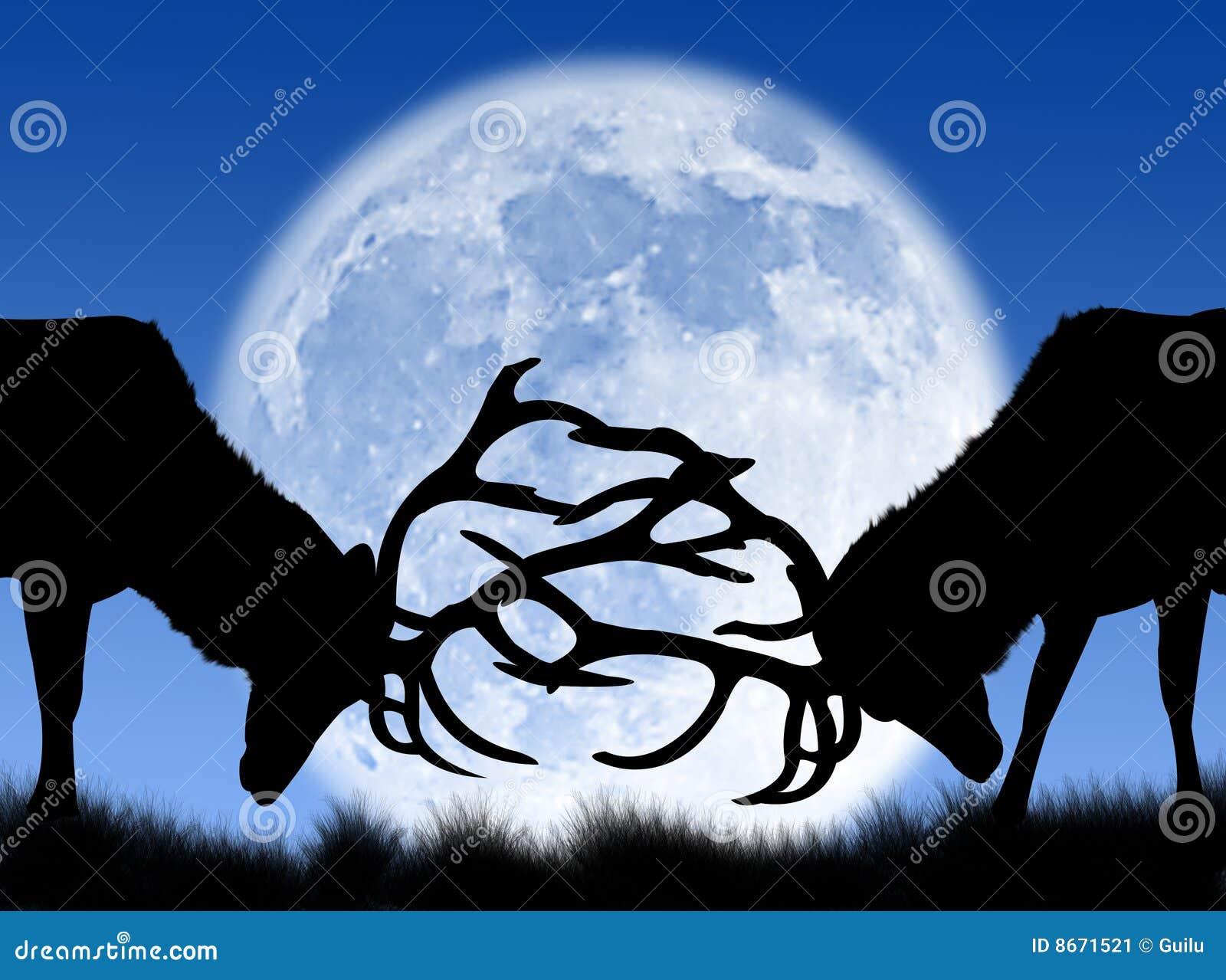 Combat de types dans la lune
