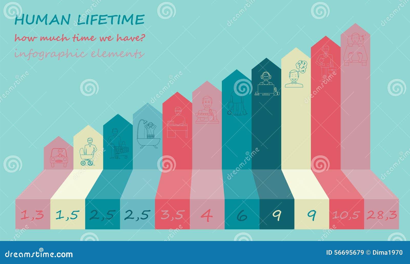 Combien D Heure Nous Avons Elements De Vie Infographic Illustration