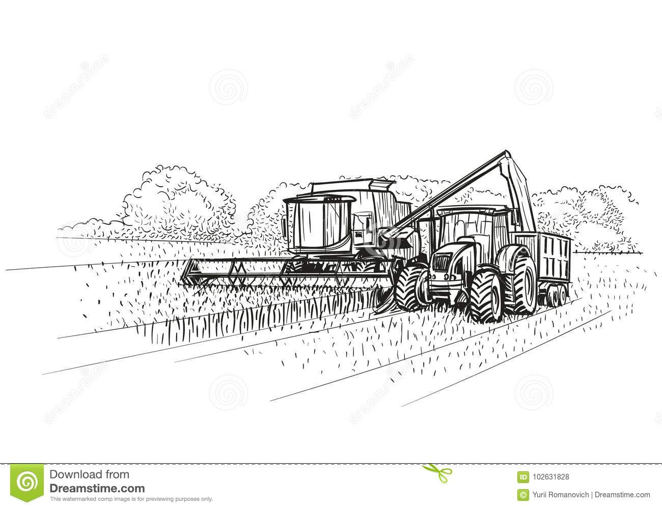 combine harvester and tractor at work on field stock