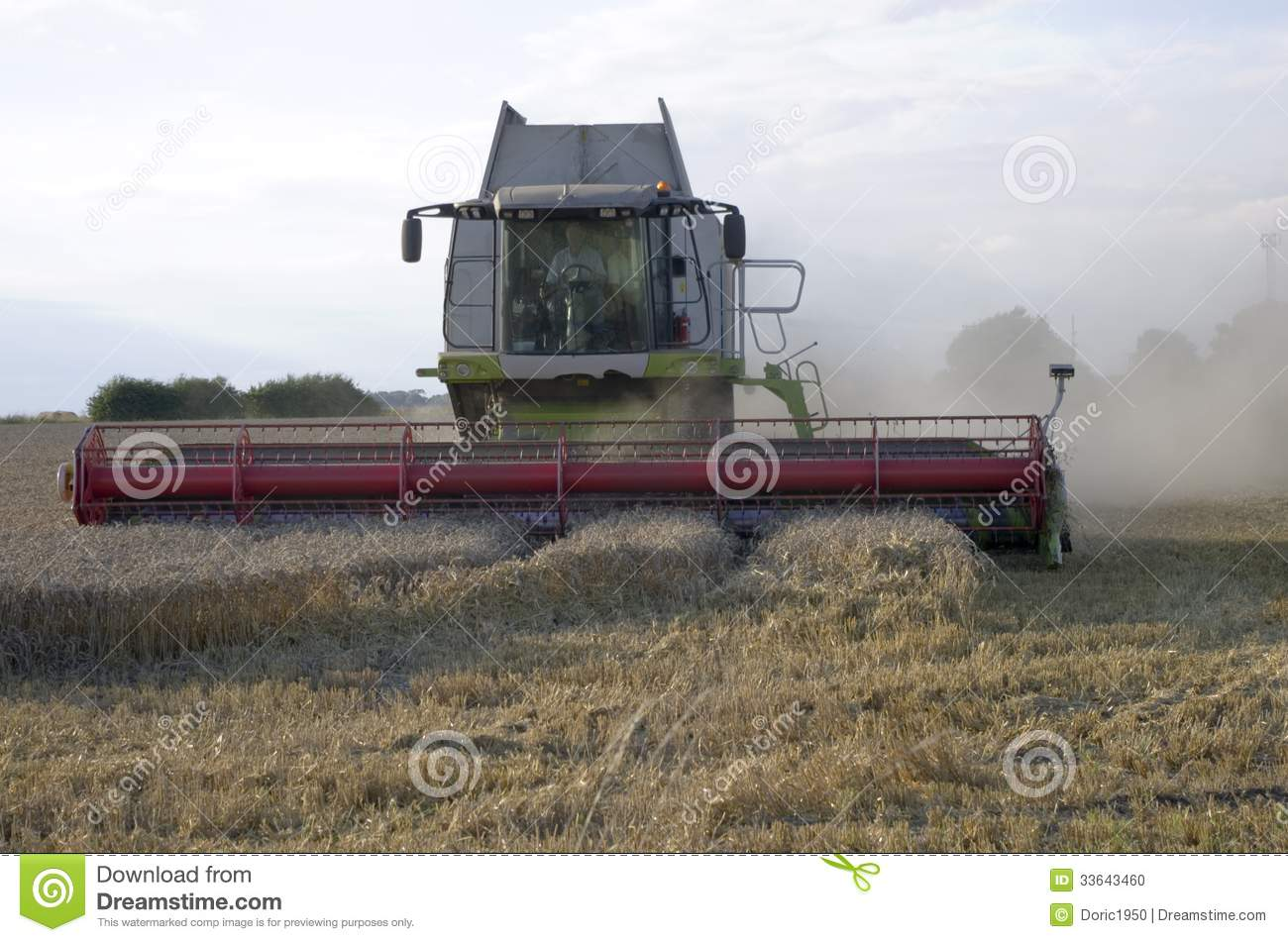 combine harvesting a crop of wheat stock photo