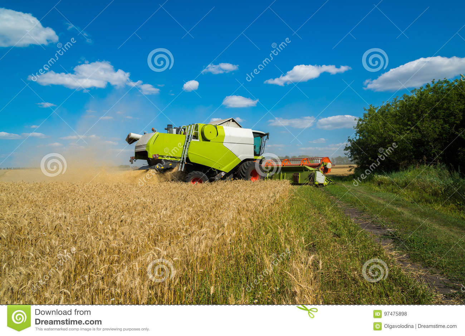 Combini il raccolto di grano dei raccolti nel campo, Russia