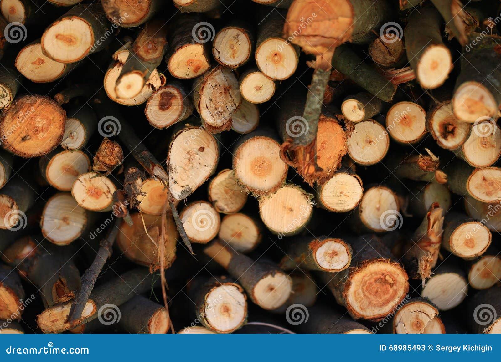Combustible de madera de madera de la textura