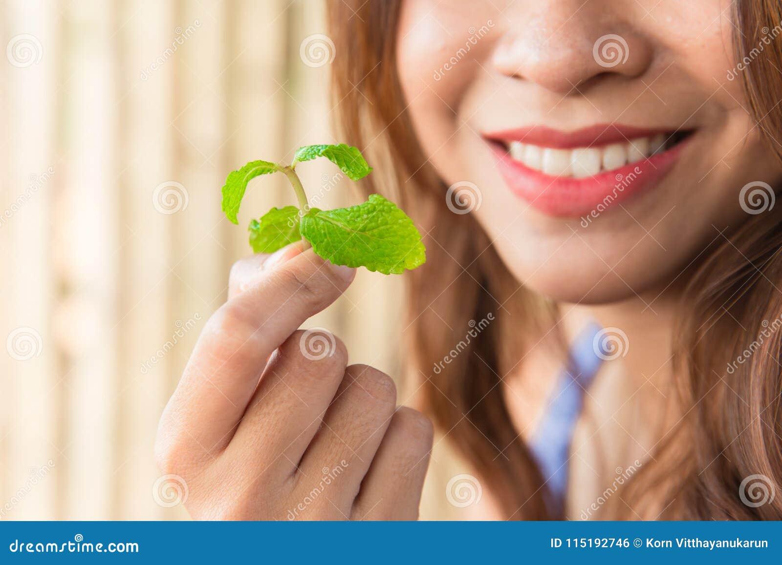 Comendo as folhas de hortelã para a boa respiração fresca dental