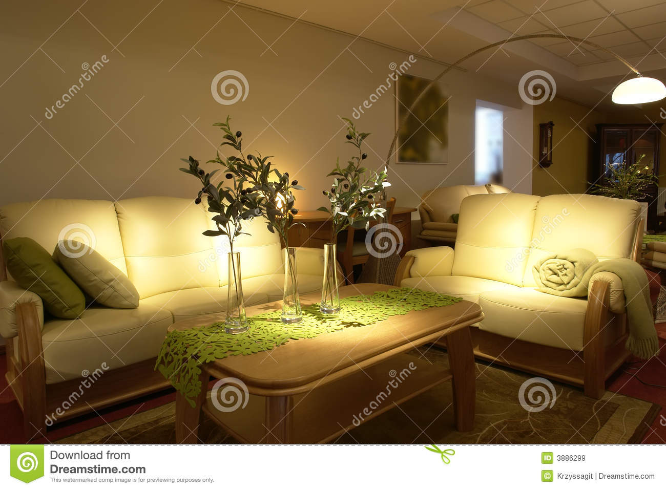 Comfortable Modern Living Room Royalty Free Stock Images Image