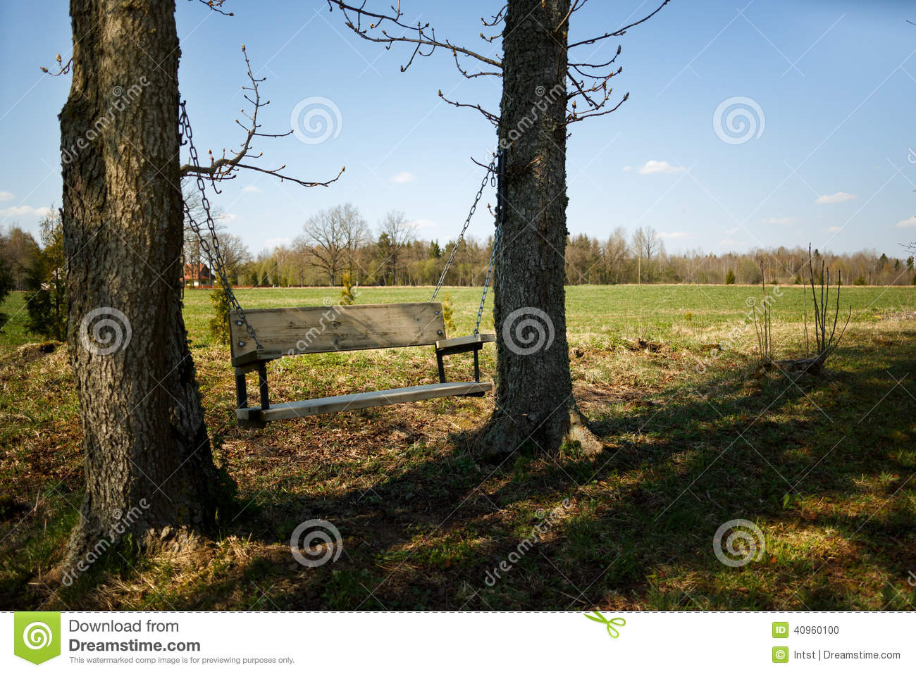 Comfortable Swing Bench Between Two Trees Stock Photo ...