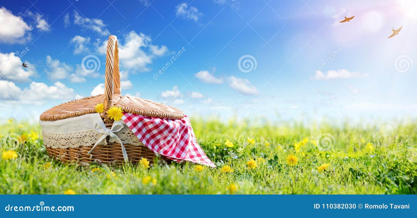 Comida campestre - cesta en prado