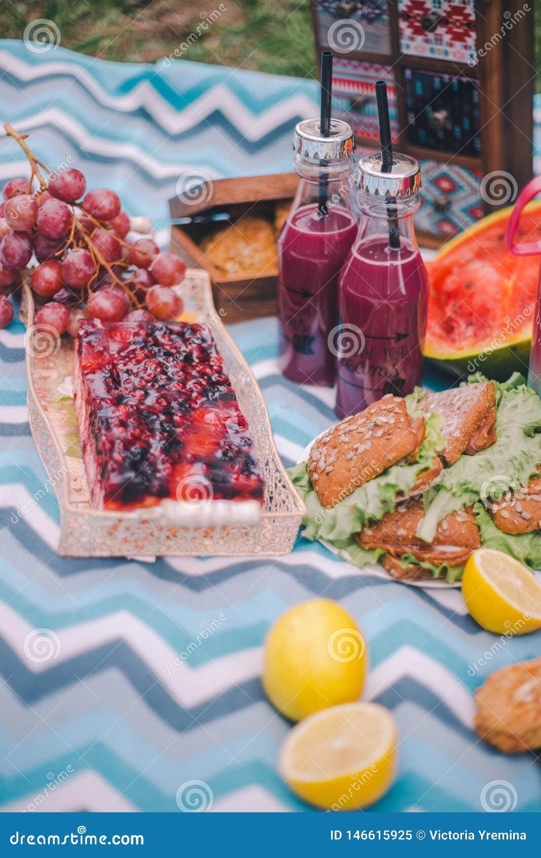 Comida campestre del primer en naturaleza Bocadillos, torta, termo, bebidas y uvas