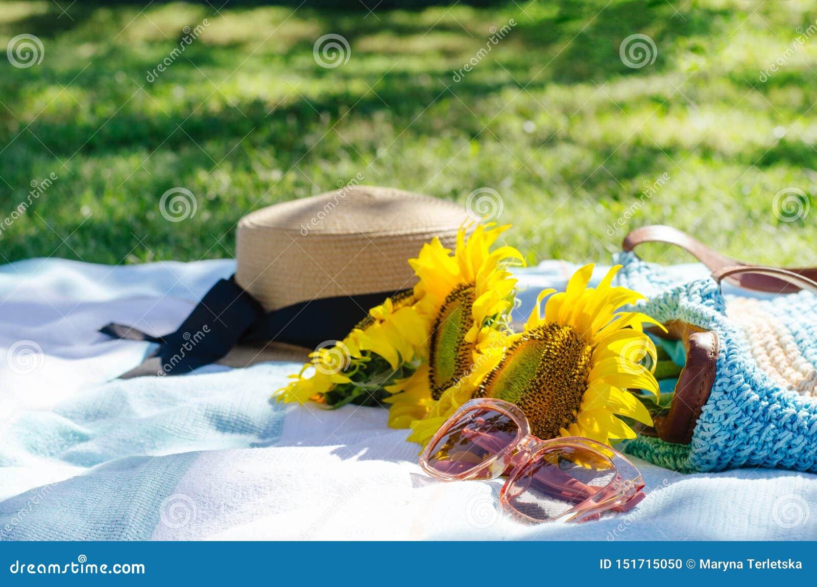 Comida campestre del verano en la hierba verde con los accesorios brillantes
