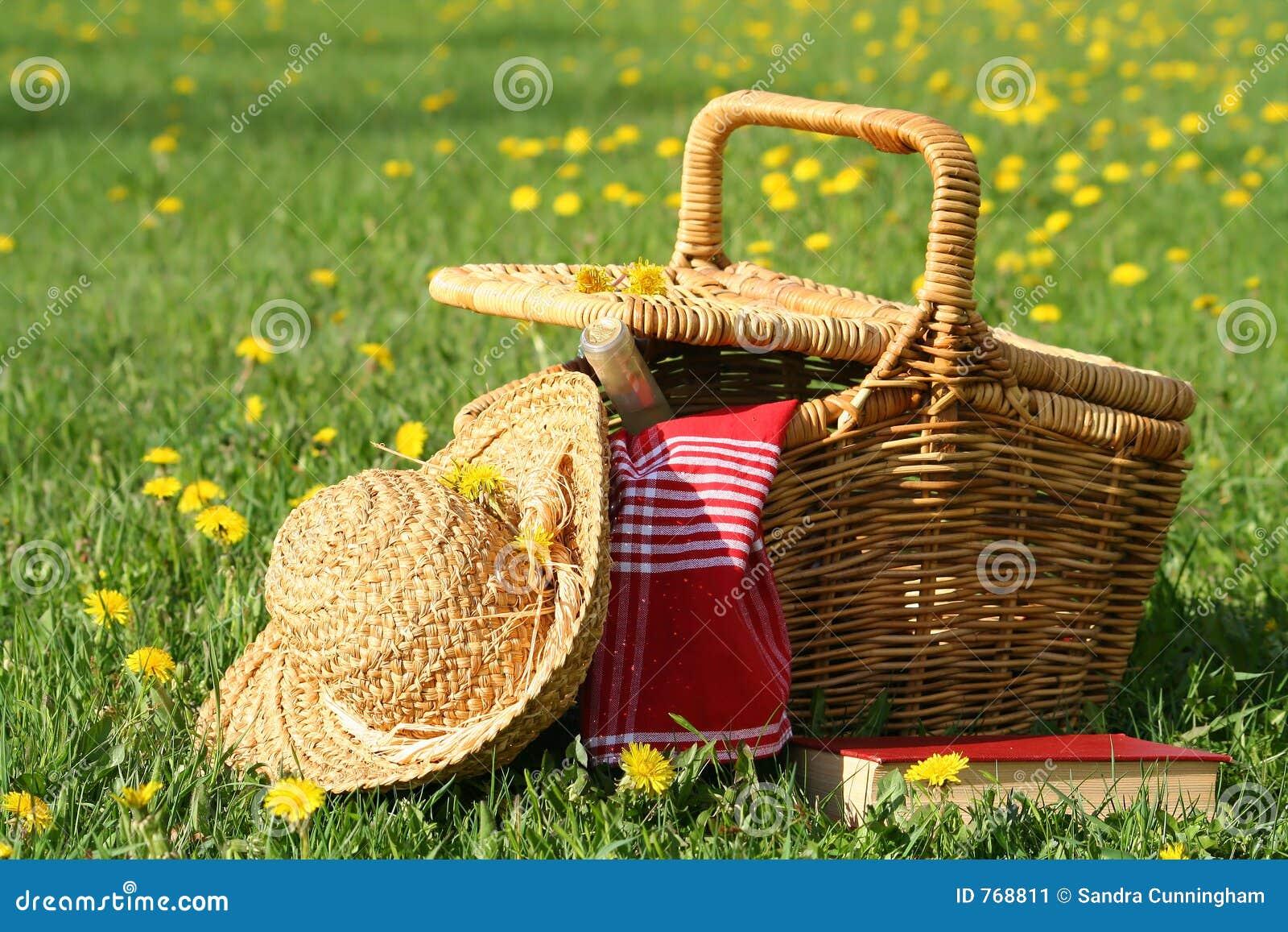 Comida campestre en la hierba