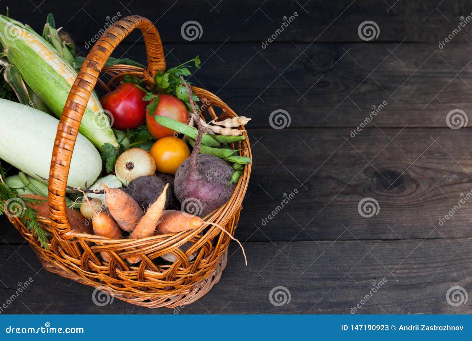Comida vegetariana del jard?n fresco del oto?o, concepto org?nico de la granja Copie el espacio para el texto