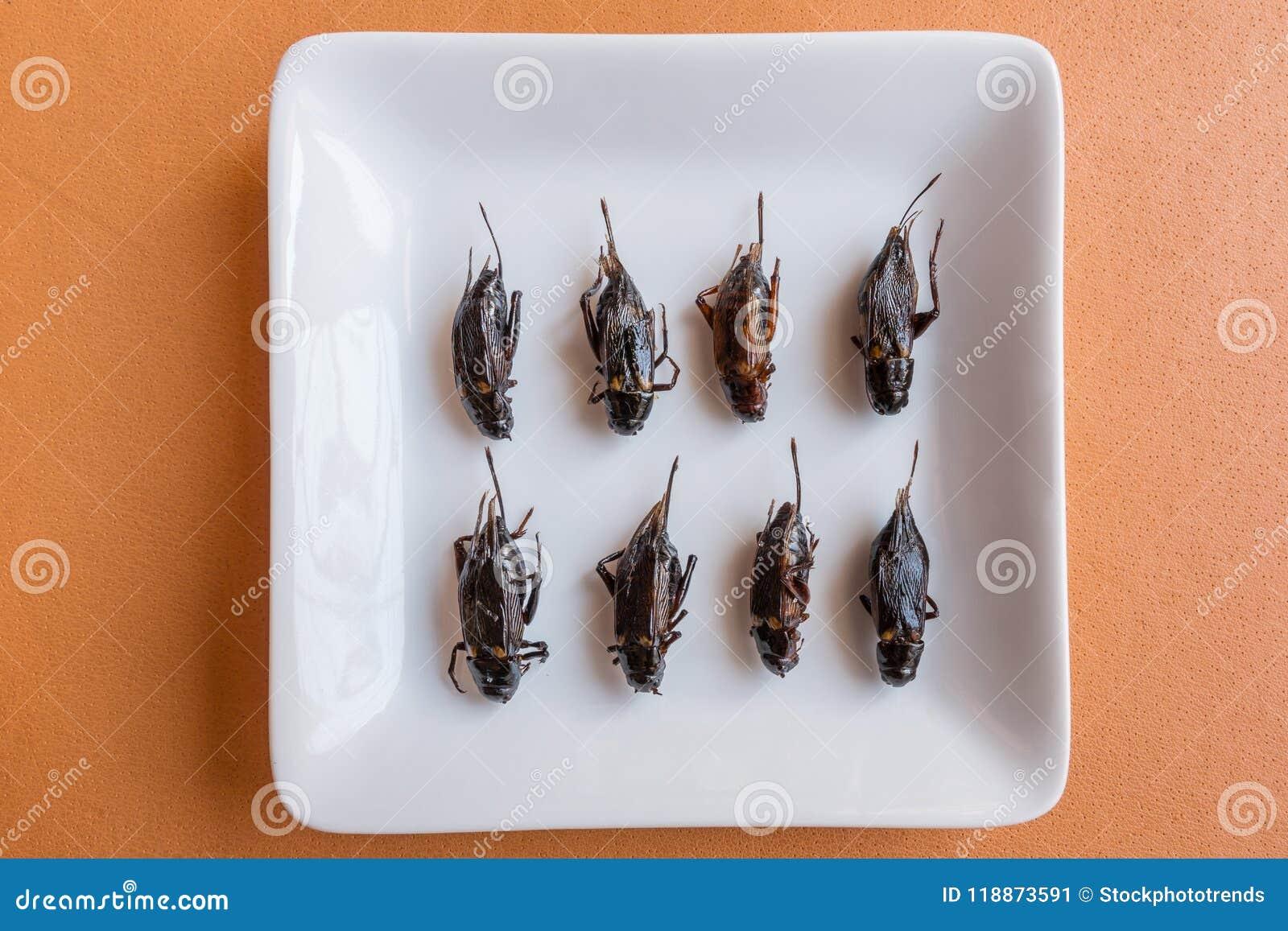 Comidas del insecto en magdalenas del plátano