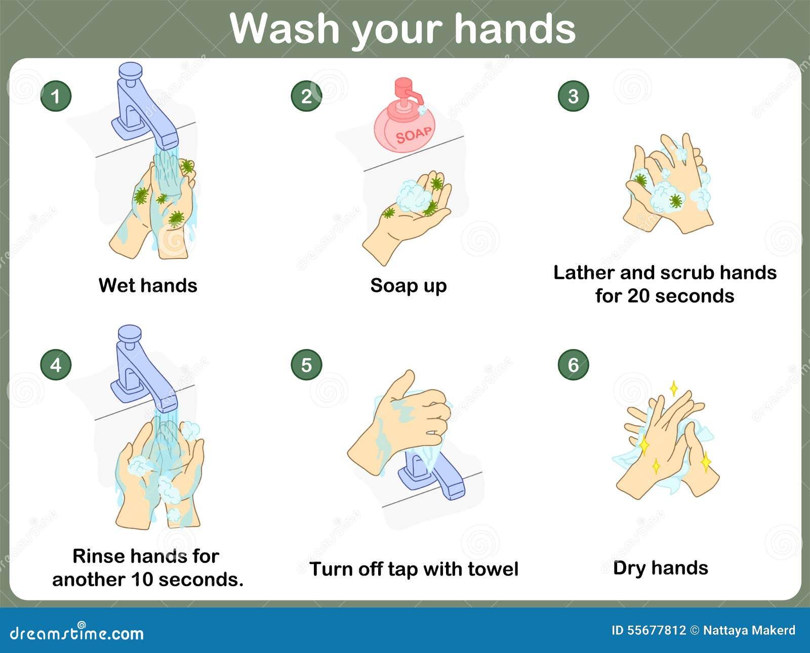comment se laver les mains illustration de vecteur illustration du essuie 55677812. Black Bedroom Furniture Sets. Home Design Ideas