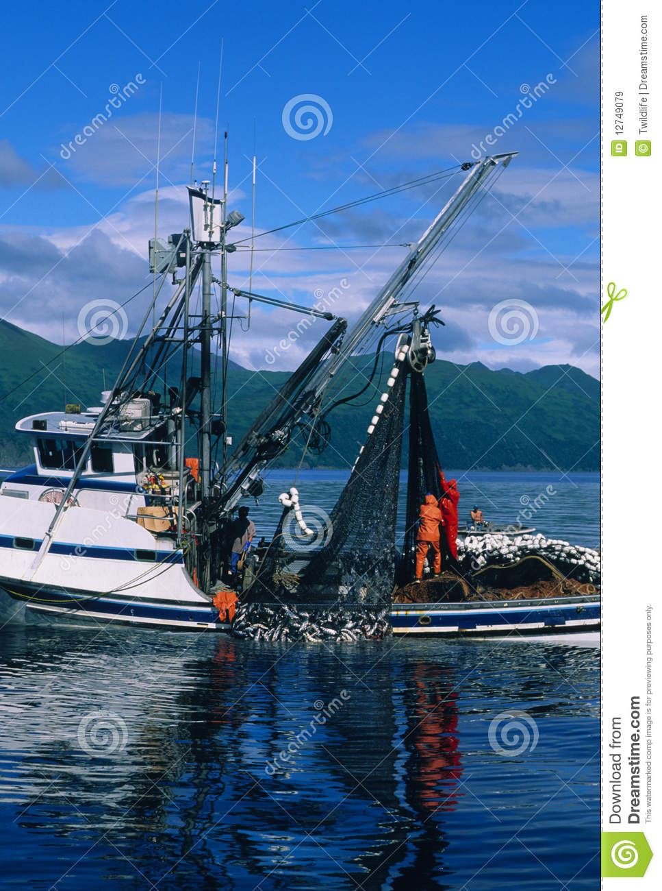 Commercial salmon fishing royalty free stock images for What is commercial fishing