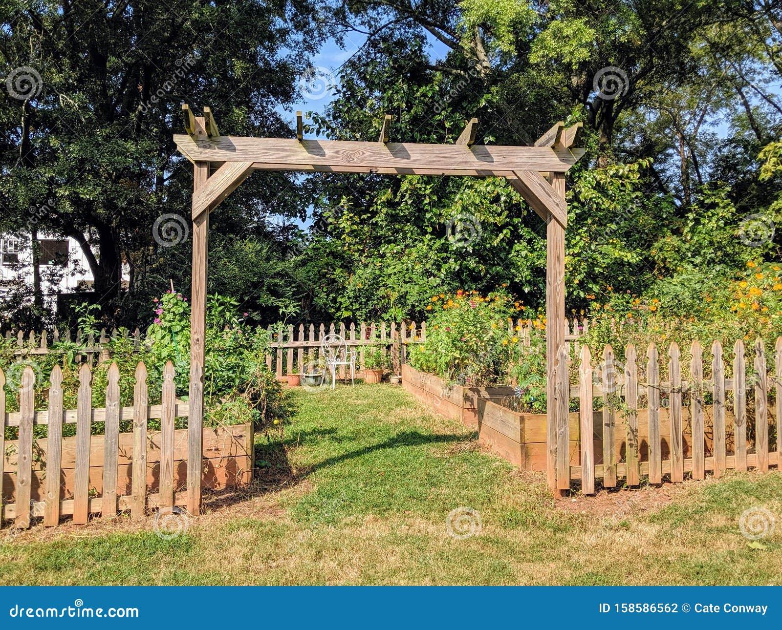 Community Garden Trellis With Wood Fence Stock Photo Image Of