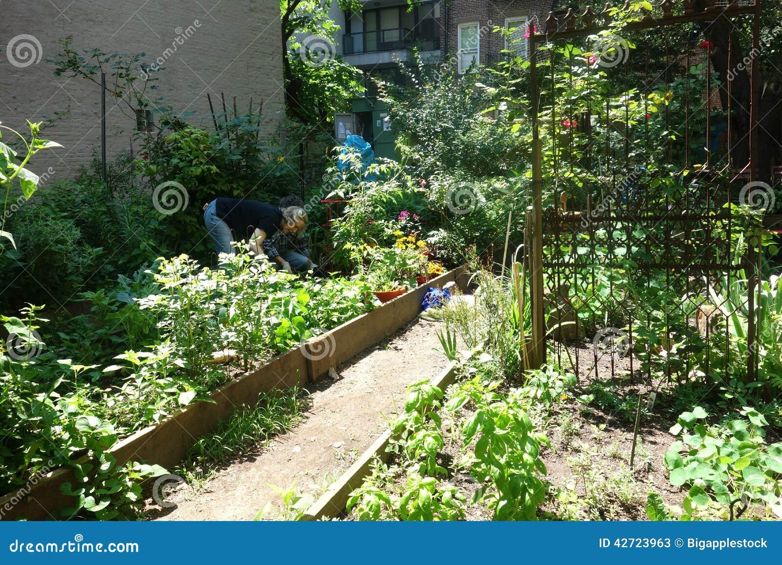 New York City Community Garden Editorial Stock Photo Image 42723963