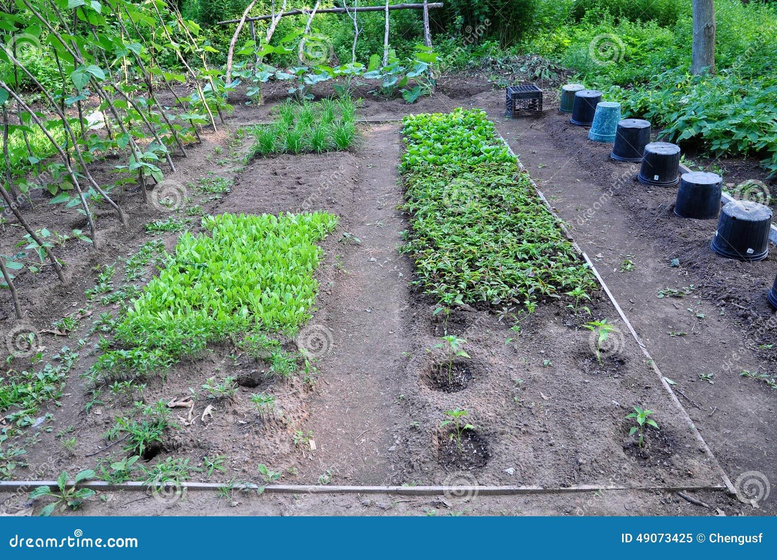 Community Garden Checklist